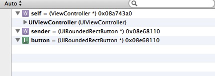 Xcode variable panel